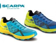 scarpa-spin-head